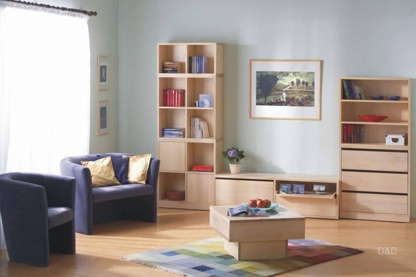living-room-storage-unit